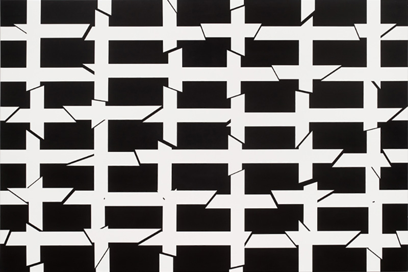 Untitled, 2010, acrylic on cotton, 200 x 300 cm,