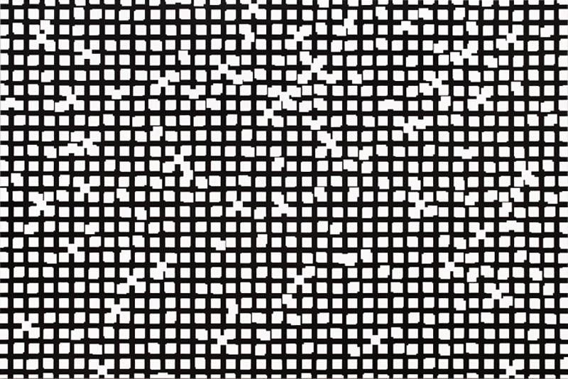 Untitled, 2010, acrylic on cotton, 200 x 300 cm